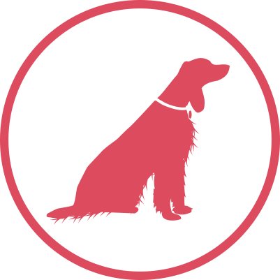 Large dog grooming prices icon